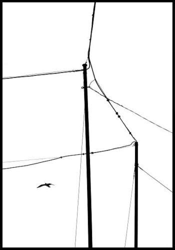 "Part of ""Achromatographs"" series"