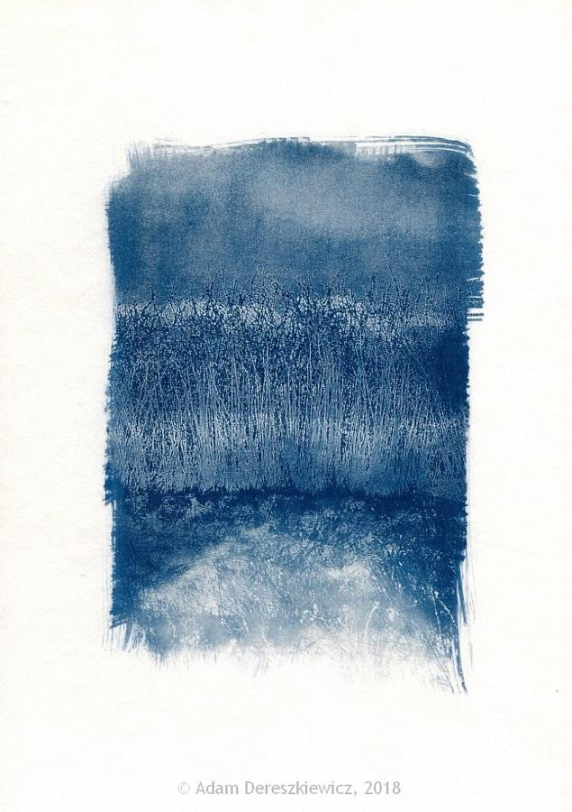 Toned cyanotype abstract landscape hand made print