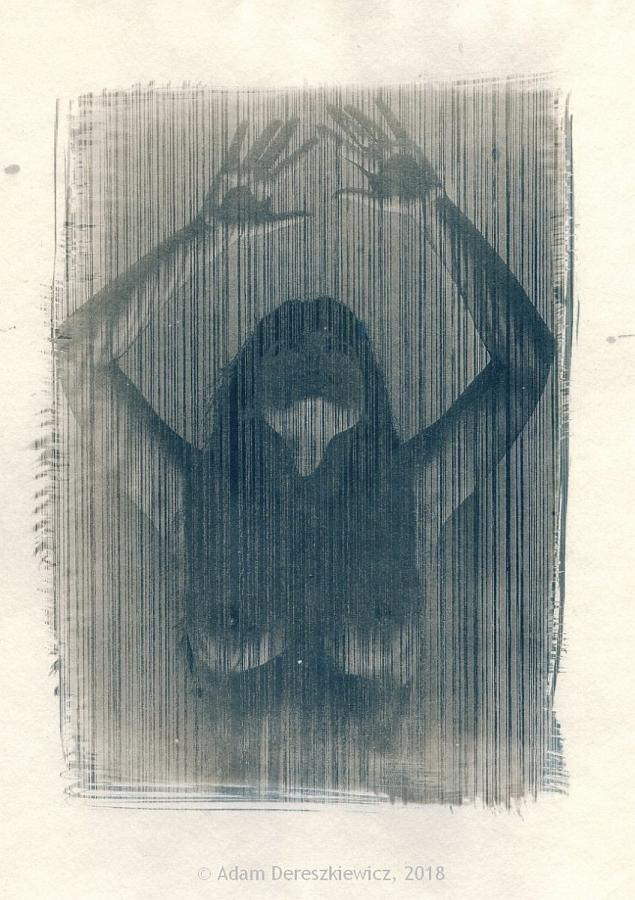 Toned cyanotypw handmade print fineart nude female torso