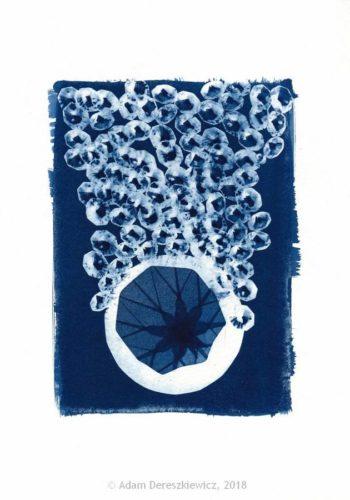 Cyanotype handmade print - unique art item abstract geometric